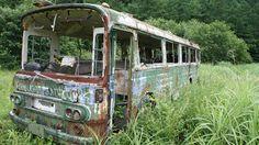 廃墟ときどき猫: 日光 廃バスと廃工場