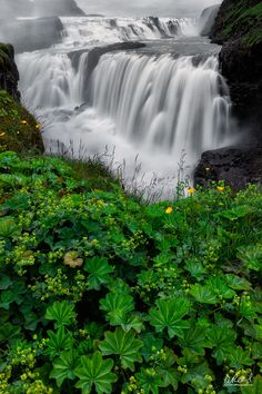The Mist - Gullfoss, Iceland, by Aaron Reed.... #mist #landscape #spring #water #travel #island #life #green #waterfall #spray