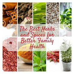 NEW BLOG POST! We have put together the ultimate guide to choosing the best herbs and spices for your family. Check it out! https://www.getspicequarter.com/blogs/spice-quarter-recipes-videos/the-best-herbs-and-spices-for-better-family-health : www.spicequarter.com.au