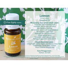 Saya menjual Young Living - Lemon 5ml seharga Rp110.000. Dapatkan produk ini hanya di Shopee! http://shopee.co.id/moncha82/4266782 #ShopeeID