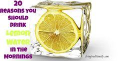 20 Reasons you should Drink Lemon Water in the Mornings