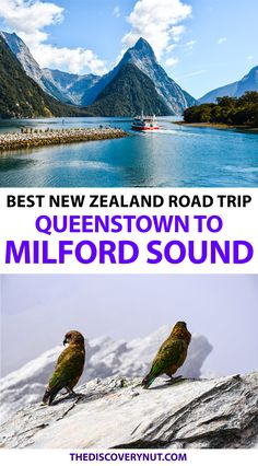 Road Trip Essentials, Road Trip Hacks, Road Trips, Queenstown New Zealand, Family Vacation Destinations, Family Vacations, Cruise Vacation, Disney Cruise
