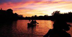Firefly Watching, Night Kayaking at Maribojoc Bohol