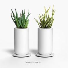 Day 01: We spend a lot of time indoors, staring at our screens instead of the greens. So we thought, why not bring some green to our desks? Voila. Two little planters perfect for your designer succulents without obstructing your view. And why two? Because…friends. #30DaysofProduct #makepretty #nordicdesignlab (na lokaciji Nordic Design Lab)