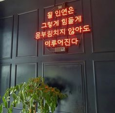 Neon Quotes, Love Quotes, Neon Light Signs, Neon Signs, Wow Words, Korean Quotes, My Motto, Korean Words, Neon Lighting