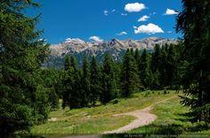 Chemin de montagne - Pays des Ecrins, Hautes Alpes