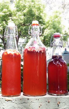 1. Elderberry-lavender 2. Rose-cardamom 3. Strawberry 4. Watermelon 5. Candied ginger 6. Lemon-lavender kombucha recipes