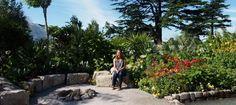 Journey Latin America's Inca Garden designed by Jennifer Jones - Pumpkin Beth Rhs Hampton Court, Garden Walls, Jennifer Jones, Flower Show, Latin America, Hedges, Surrey, Beautiful Gardens, Markers