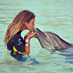 Dolphin kiss, love, travel, fashion, animal, zoo, sea, summer, cute