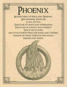 """Embracing the legend of the fiery bird that rises again from the ashes of its own death, the Phoenix Poster seeks this spirit of rebirth and grace through poetic prayer and beautiful illustration.  8 1/2"""" x 11""""."""