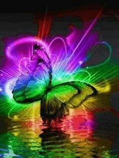 Lovely butterfly.