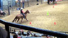 Sharon Camarillo - Midwest Horse Fair 2013