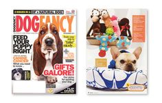 In the News | Up Country: Designer Dog and Cat Collars and Accessories