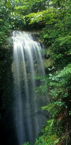 Florida's Only Waterfall Is a Natural Wonder