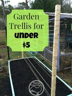Fifteen Gardening Recommendations On How To Get A Great Backyard Garden Devoid Of Too Much Time Expended On Gardening Some Call It Thrifty, But I Will Admit It, I Am Cheap Check Out The Trellis System I Made For My Raised Garden Beds For Under 5 Bean Trellis, Garden Trellis, Tomato Trellis, Diy Trellis, Pole Beans Trellis, Hops Trellis, Verticle Garden, Grape Vine Trellis, Deer Garden