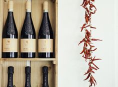 Delicious Italian vino Barbera D'Asti