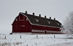 Big red barn with riding arena for our long -30C winters.