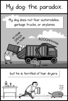 Click to see the whole cartoon - so so funny and sweet at the same time:D  And I agree wholeheartedly with this;  Maybe that's why we love them so much - because their lives aren't lengthy, logical or deliberate, but an explosive paradox composed of fur, teeth and enthusiasm <3
