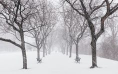 Обои зима, город, улица картинки на рабочий стол, раздел город - скачать