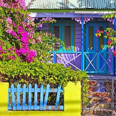 Vacation in the colorful Caribbean OR staycation at home in the cold? Guess where I'd rather be.