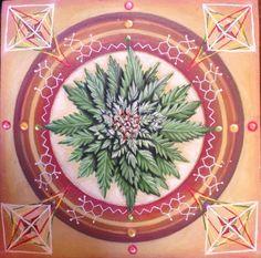 Marijuana Mandala (2015) Oil painting by Dawn Du Preez | Artfinder
