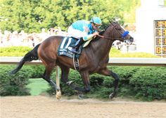 Bodemeister(2009)(Colt) Empire Maker- Untouched Talent By Storm Cat. 4x4 To Northern Dancer, 4(C)x5(C) To In Reality, 4(F)x5(F) To Secretariat. 6 Starts 2 Wins 4 Seconds. Won Arkansas Derby(G1), 2nd Ky Derby(G1), Preakness S(G1), San Felipe S(G2). His First Crop Are 3 YOs Of 2017.