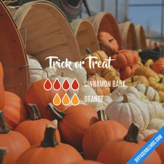 Trick or Treat - Essential Oil Diffuser Blend
