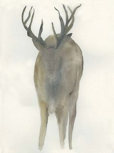Solo Deer Fine Art Print by Beverly Dyer at FulcrumGallery.com