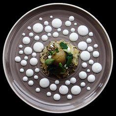 Fermented cabbage hazelnut and buttermilk cannabis seeds herbs new potato by Tadas Eidukevičius #GourmetArtistry by gourmetartistry