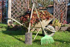 Mitte Oktober wird es nun langsam Zeit den Garten winterfest zu machen. Damit Sie dabei nichts vergessen, hier eine Checkliste, welche Aufgaben erledigt werden sollten. Die Tage werden kürzer, die Nächte länger und kälter – der Herbst ist da. Die Pflanzenvegetation in Ihrem Garten schaltet nun auf den Schongang herunter, was nun auch der perfekte Zeitpunkt dafür ist, den Garten winterfe ...