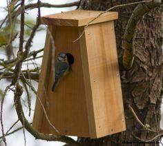 Nature by Colibri Nichoir Mangeoire Nichoir Nichoir en bois vintage Bleu