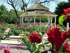 7 Positive Cool Tricks: Backyard Garden Wedding Globe Lights garden ideas flower tips and tricks.Garden Landscaping India garden ideas flower tips and tricks.