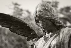 Ohlsdorfer Friedhof / Ohlsdorf Cemetery (Hamburg) {EXPLORED} by Drummingjack, via Flickr