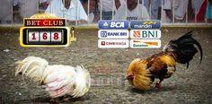 Untung Bonus Kemenangan Judi Ayam Terbesar, Promo Deposit Termurah Judi Ayam, Agen Judi Ayam Online Terpercaya, Situs Judi Ayam Online Terpopuler, Promo Bonus Besar Judi Ayam Online