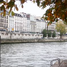 L'automne à Paris  Lovely fall scenes everywhere around me  Is It me or La Seine looks like a huge swimming pool  by alleedesroses instagramers I like