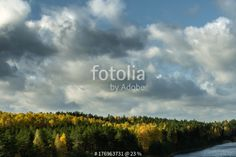 """""""Autumn landscape, forest in a sunset light in Ogre Blue hills park"""" Stock photo and royalty-free images on Fotolia.com - Pic 176963731"""