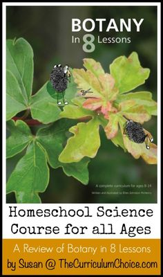 Botany in 8 Lessons  This is a complete curriculum for ages 8-14, but it can also be used at the high school level.