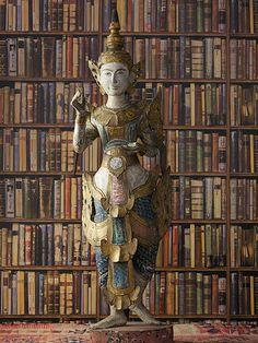 library walls wallpaper