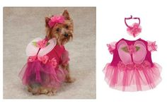 flower crown for dogs | Fairy Costumes for Dogs Halloween Dog Costume Free Shipping | eBay