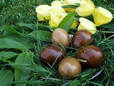 Cum vopsim ouale in mod natural? Jacque Pepin, Easter, Fruit, Nature, Food, Naturaleza, Easter Activities, Essen, Meals