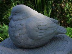 Fågelunge