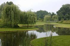 Garden Pond Design, Love Garden, Water Garden, Landscape Design, Outdoor Ponds, Ponds Backyard, Beautiful Landscapes, Beautiful Gardens, Natural Swimming Ponds