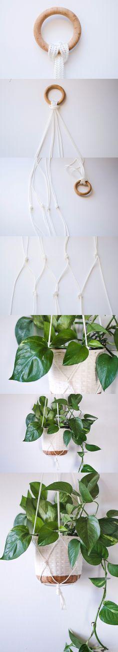 Planta colgante para adornar / http://atilio.blogg.se