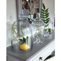 Колпак стеклянный La Redoute Interieurs