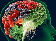 Veja o que incluir na alimentação para ajudar seu cérebro a trabalhar mais e melhor aumentando as conexões neurais. Saiba o que faz bem para a memória.