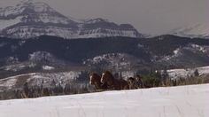 A Heartland Christmas - H AHC 0032 - Heartland Screencaps Graham Wardle, Amber Marshall, Heartland, Amy, Snow, Mountains, Nature, Christmas, Travel