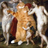 Zarathustra the cat