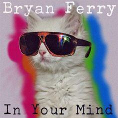 Kitty Ferry