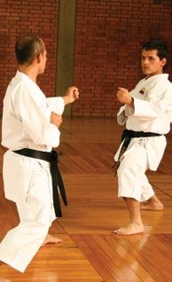 karate  www.pinterest.com/gabrielzanetti/