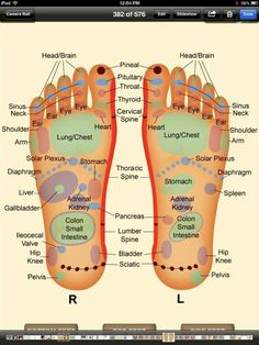 Feet Reflexology